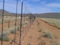 KALAHARI GAME FENCE(2)